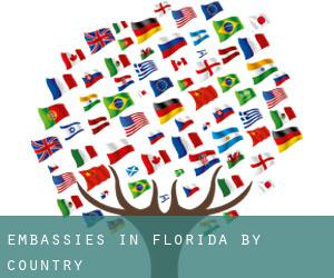 Embassies in Florida by Country